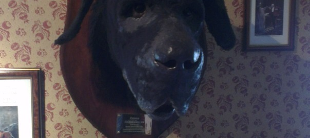 Hound of Baskerville in 221B BakerStreet